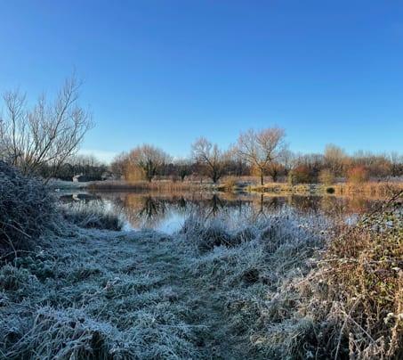 Winter at Castle Farm